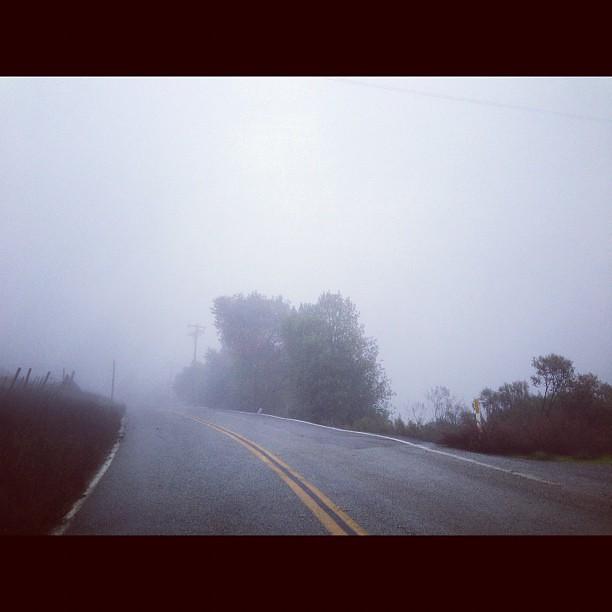 Mt. Eden in the drizzle.