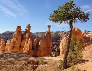 12 December - Three Wise Men Bearing Gifts, Bryce Canyon National Park, Utah