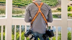 Big guns #canonlens secured and instantly accessible  . BUY on #Amazon #clydesdalepro #leathergoods #madeinusa #vineyard #weddingphotography #optoutside