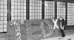 Registration & Continental Breakfast   TEDxSanDiego …