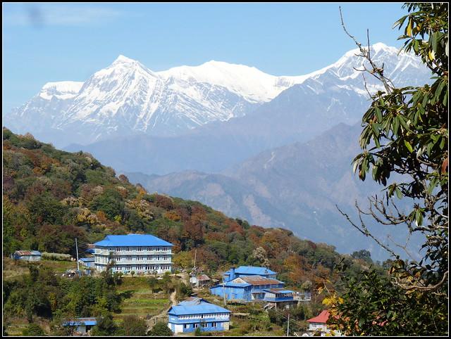 Ghorepani in the backdrop of Dhaulagiri range . . .