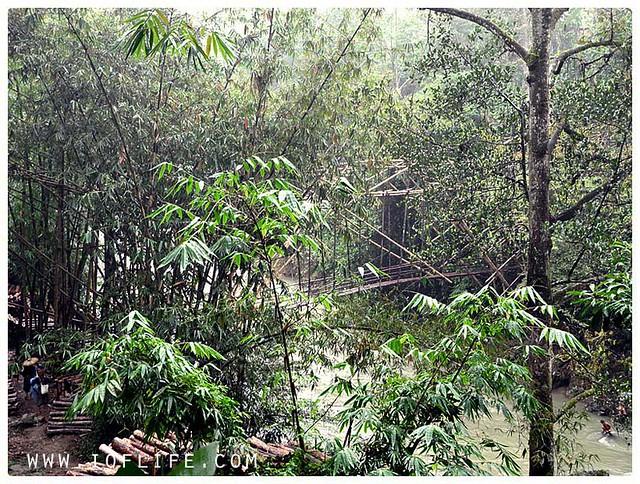 jembatan bambu 2