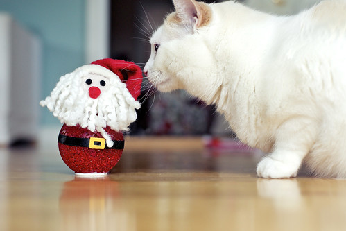 Nose bump for Santa.