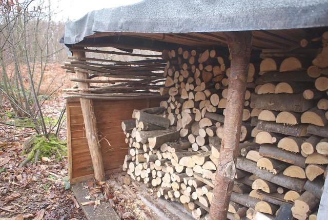 DSC_5440 logs in a store