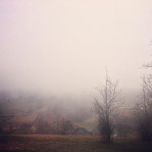 Foggy Christmas Eve