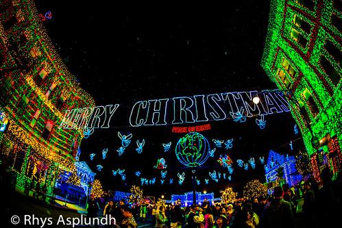 Merry Christmas & Peace On Earth