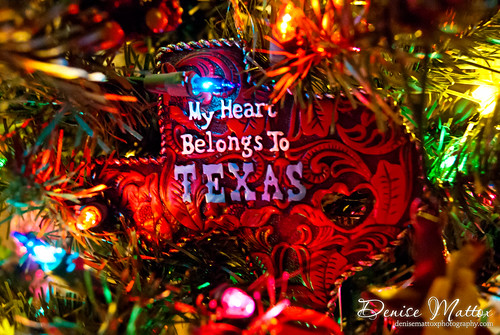 043: Texas Ornament