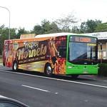 Hornibrook Bus Lines Clontarf