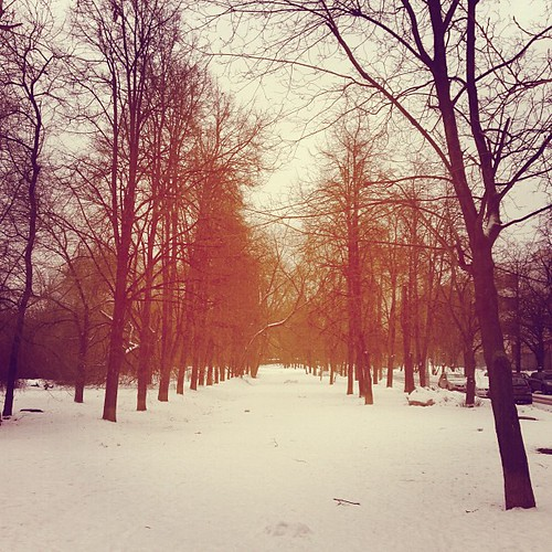 A usual daywalk by foma_kamushken