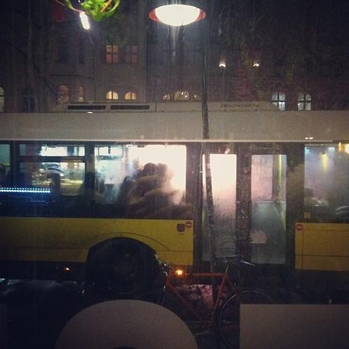 Fog lit bus #wander