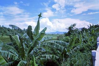 Landscape view - Los Baños (Laguna)