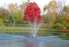 Perrysburg Hospice Center fountain