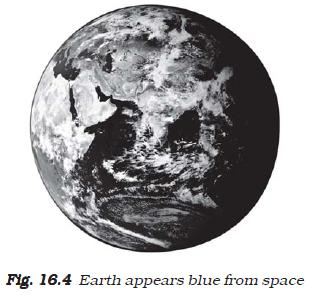 NCERT Class VII Science Chapter 16 Water