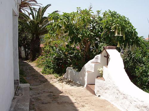 Camino Real, San Juan de la Rambla to Las Aguas