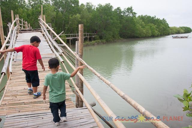 Bakhawan Eco-Park-12.jpg