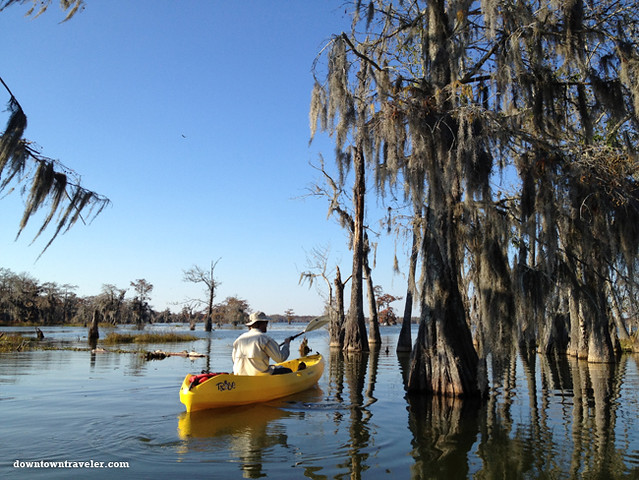 Cajun Country Alligator Swamp Tour 2
