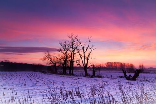 morning winter sunrise landscape ochtend zonsopgang keerbergen broekelei dijlevallei dijlestraat landscahppen