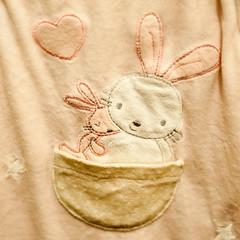 Little Bunnies 34/365