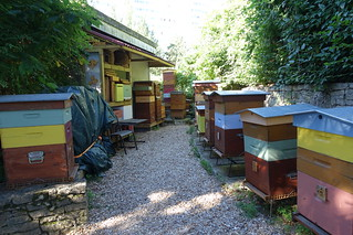 Artificial beehives @ Parc Georges Brassens @ Paris | by *_*