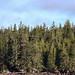 Alaska Itinerary-42.jpg