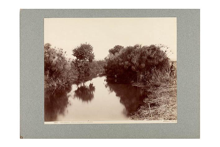 Albumen - Landscape