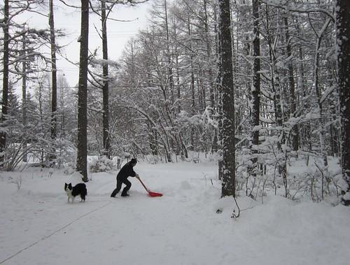 アプローチの雪掻き 2012年12月10日9:41 by Poran111