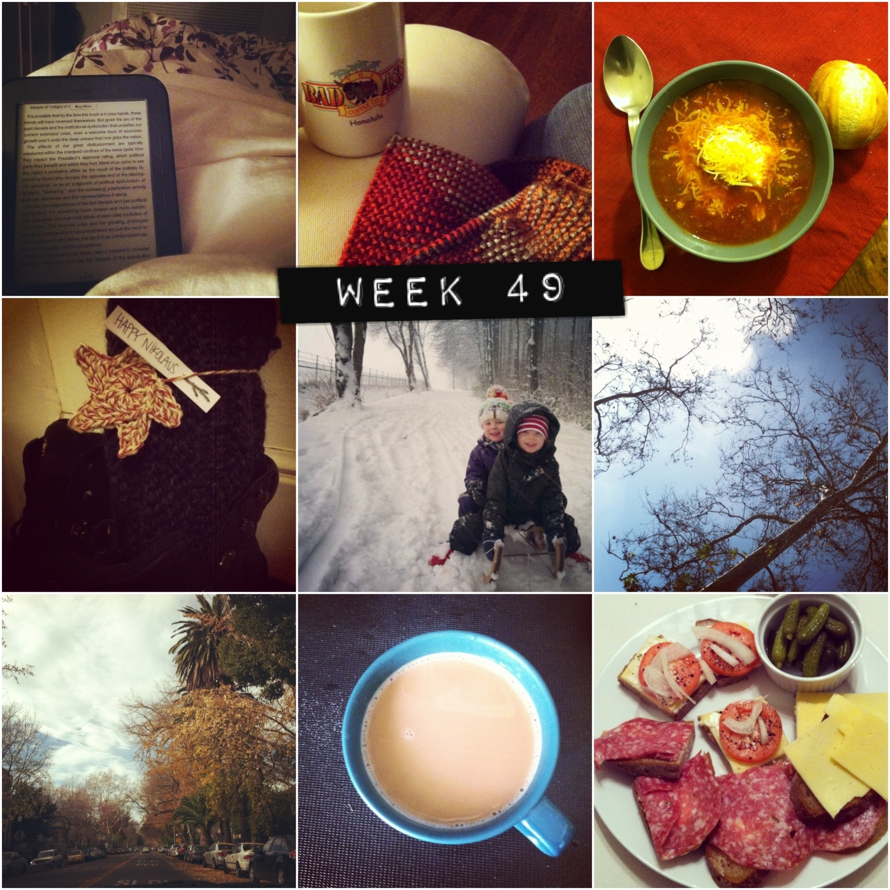 2012 in pictures: week 49
