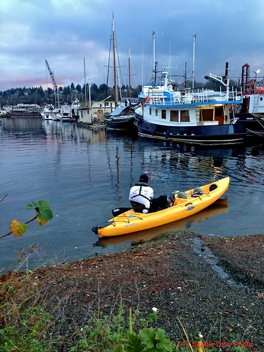 Cold Winter's Day Kayaker by Seattle Daily Photo
