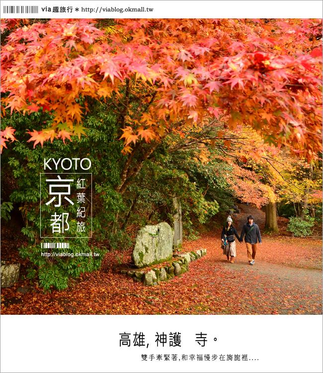 【紅葉最前線】京都 高雄神護寺~via*2012京都紅葉紀旅的華麗首站!