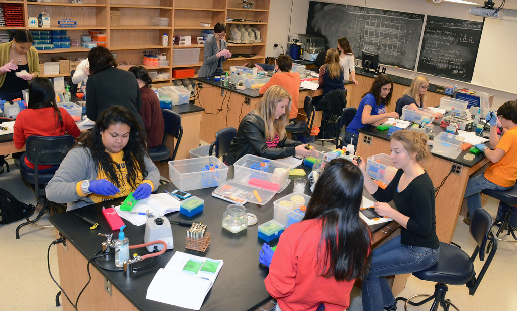 Gettysburg science offerings include programs in biochemistry and molecular biology, biology, chemistry, environmental studies, health and exercise sciences, neuroscience, physics, and psychology, as well as health professions advising.