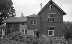 Rosenhaug - Tunet (1982)