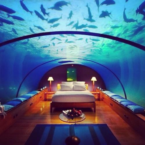 للعرسان فقط فندق كونراد على جزيرة رانجالي في المالديف عالم أخر من الرومانسية ,