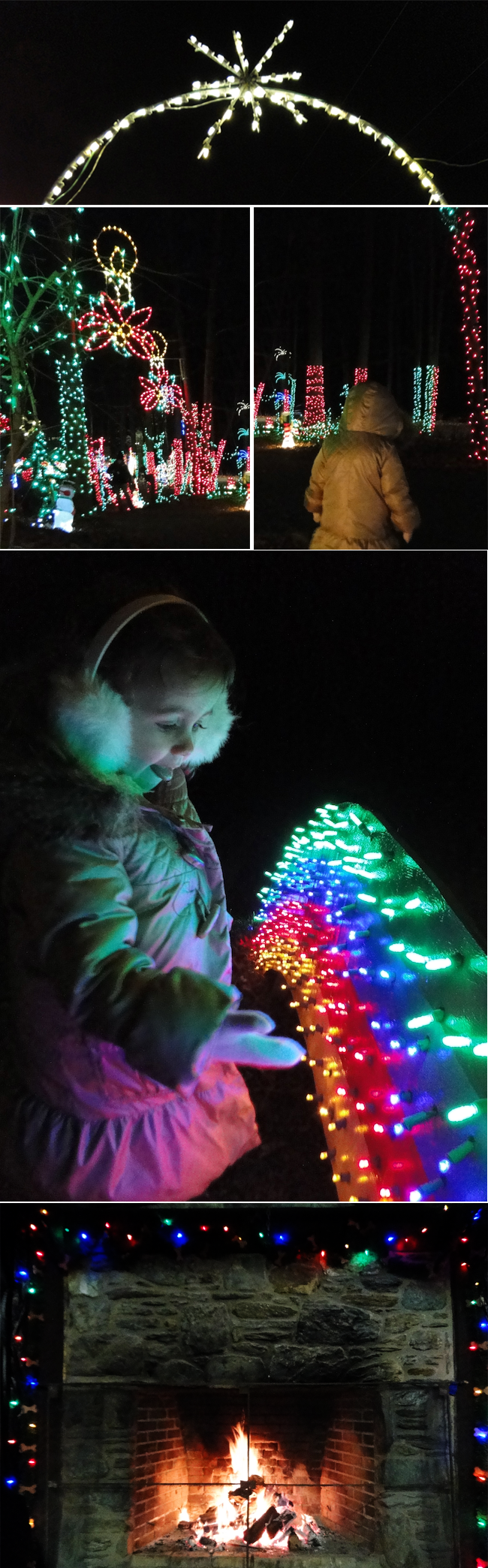 A-Lovely-Lark-Christmas-Lights-2012