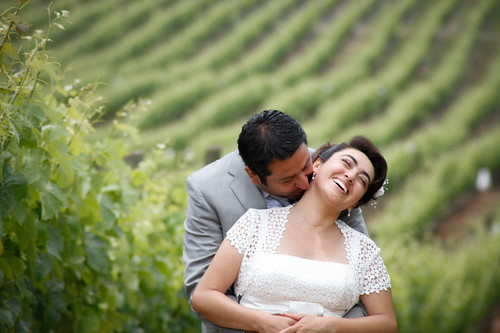 en los viñedos