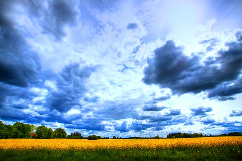 sky field clouds estonia catherinekõrtsmik