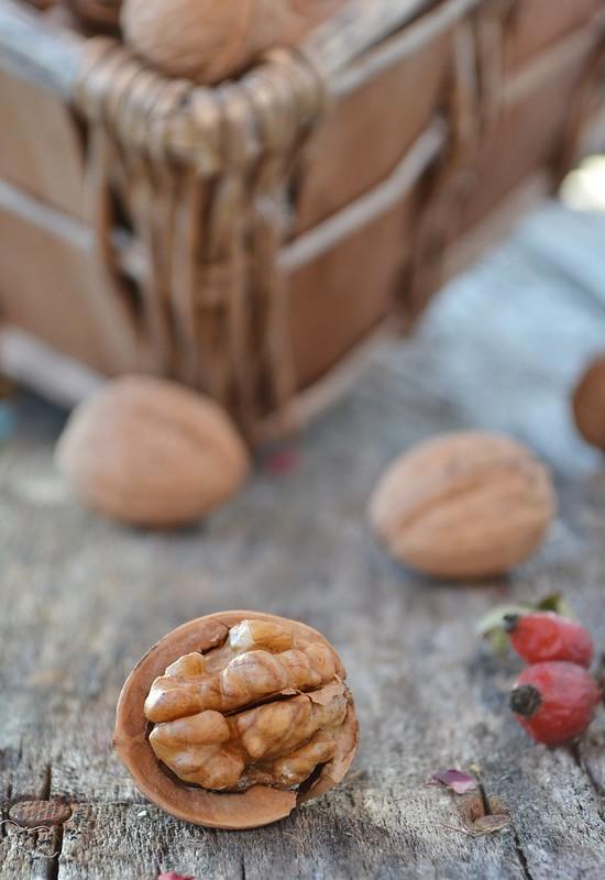 грецкий орех.1