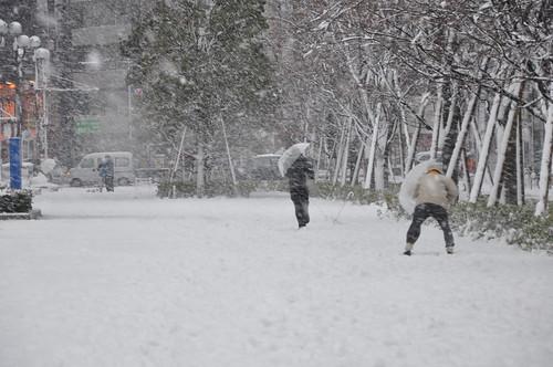 2013-01-14_東京雪景色_010