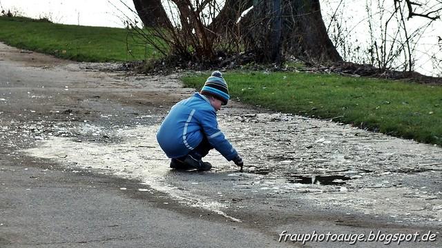 Eis im Kölner Rheinpark