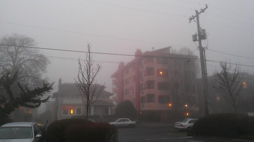 I kinda hope this fog lasts for weeks by christopher575