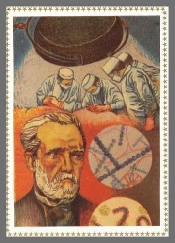 Louis Pasteur. Illustration sur soie