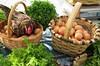 Exposición y venta de productos del caserío