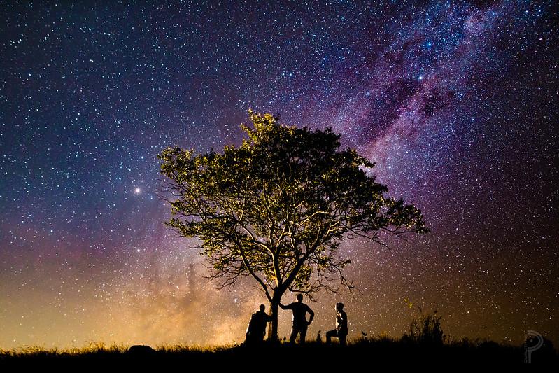Cosmic Order stars stories