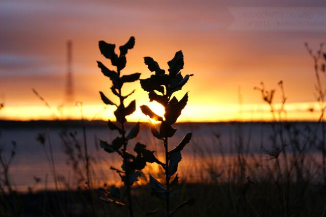 Sunset, December 7 2012 - 3