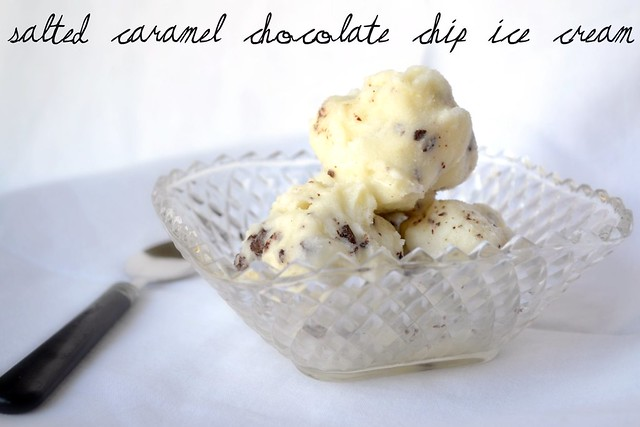 salted caramel chocolate chip ice cream meme