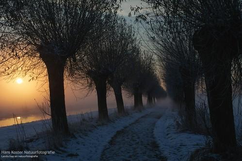 mist snow cold colors bikepath sunrise sneeuw uden koud fietspad kleuren zonsopkomst maashorst hknatuurfotografienl leijgraaf hanskoster