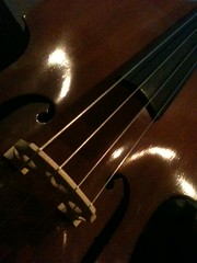 string instrument, violin, viol, viola, guitar, double bass, cello, string instrument,