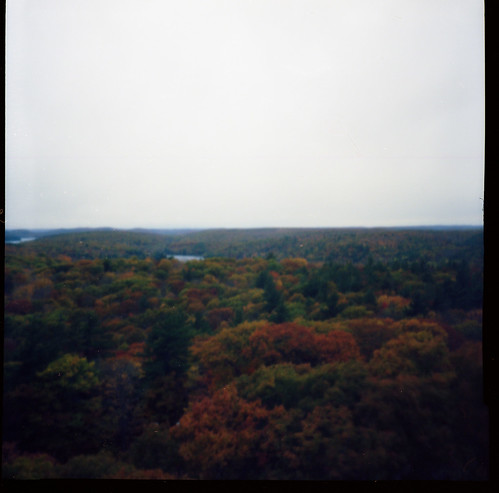 nov november autumn trees ontario canada color colour tower fall classic 120 film leaves vintage lens landscape toy fantastic lomo lomography october flat kodak oct grain lookout plastic negative diana f dorset roll medium format 100 muskoka cheap remake reproduction ont ektar sooc