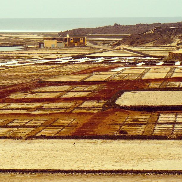 Salt pans, Lanzarote.