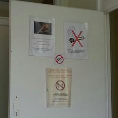 No Smoking ! ( ils aiment vraiment pas ça...) - Photo of Lamancine