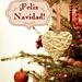 Feliz Navidad by Alejandra Click